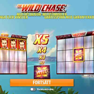 The Wild Chase slots