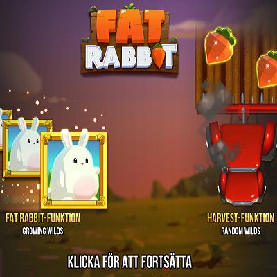 Fat Rabbit Slots