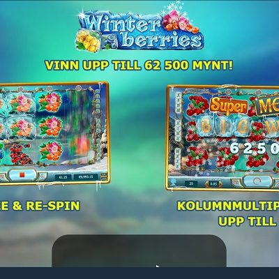 Winter Berries Slots