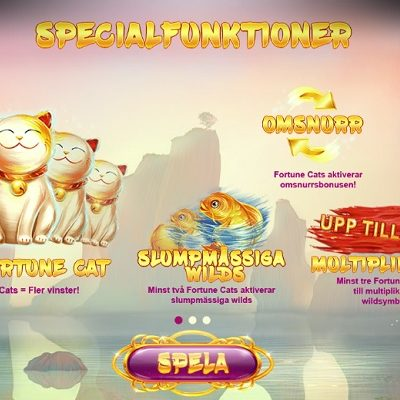 Lucky Fortune Cat Slots